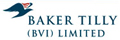 Baker Tilly (BVD Limited)