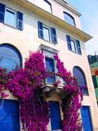 Italy luxury houses